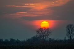 Sonnenuntergang (1)
