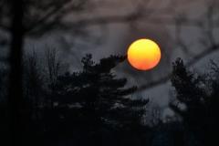 Sonnenuntergang (4)